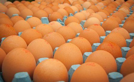 huevos-j-company-valencia-granel