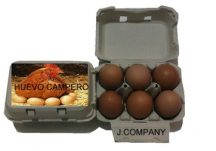 huevos-j-company-valencia-huevo-campero-56