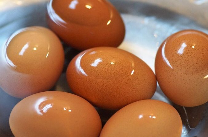 huevos-j-company-valencia-lavar-huevo-59